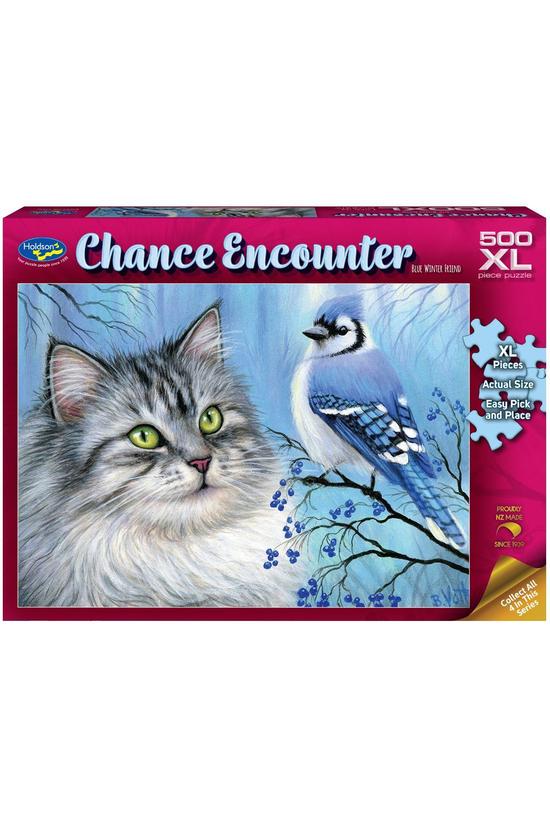 Chance Encounter 500xl Piece J...