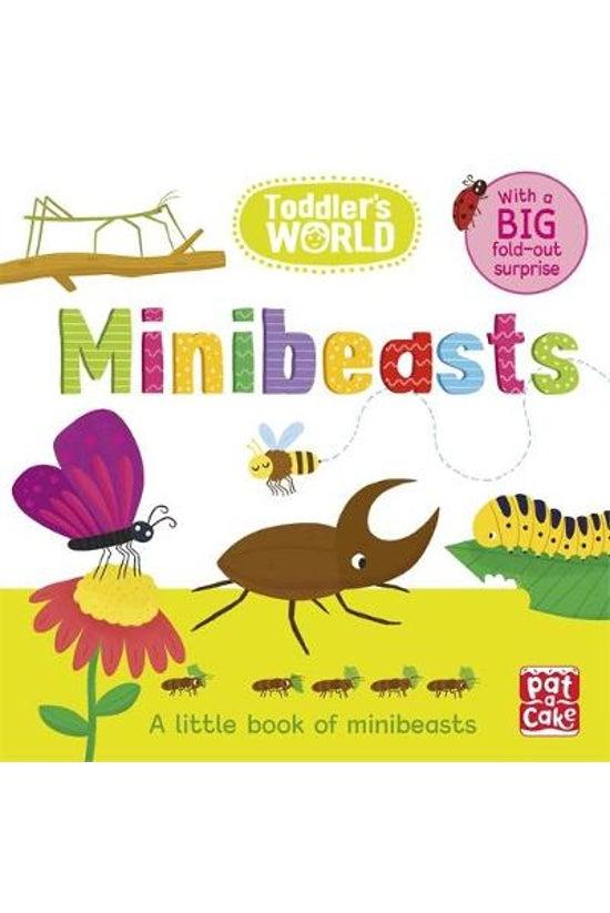 Toddler's World: Minibeasts