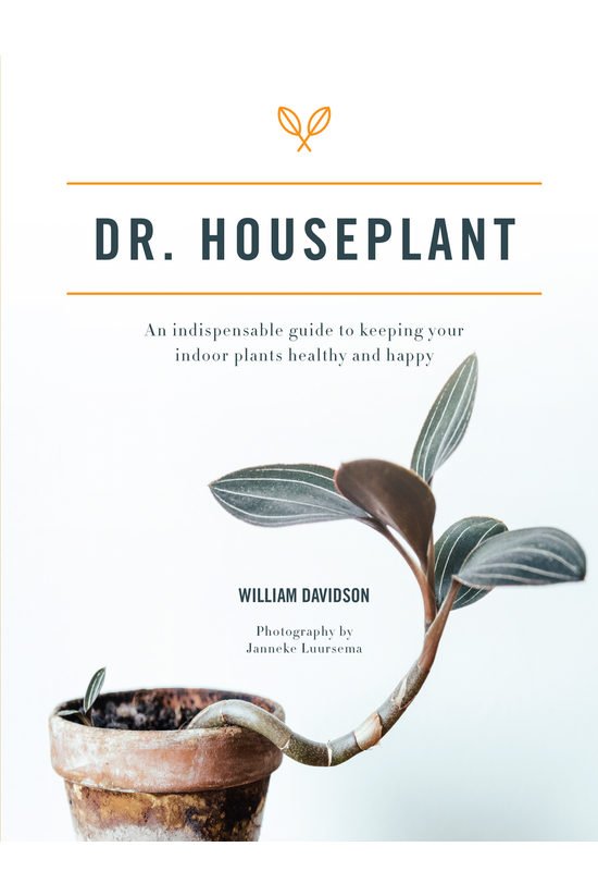 Dr Houseplant