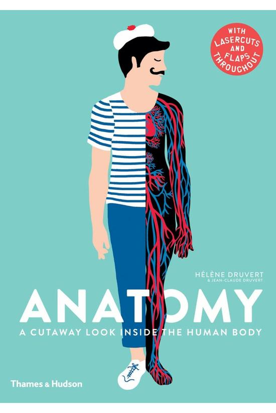 Anatomy: A Cutaway Look Inside...