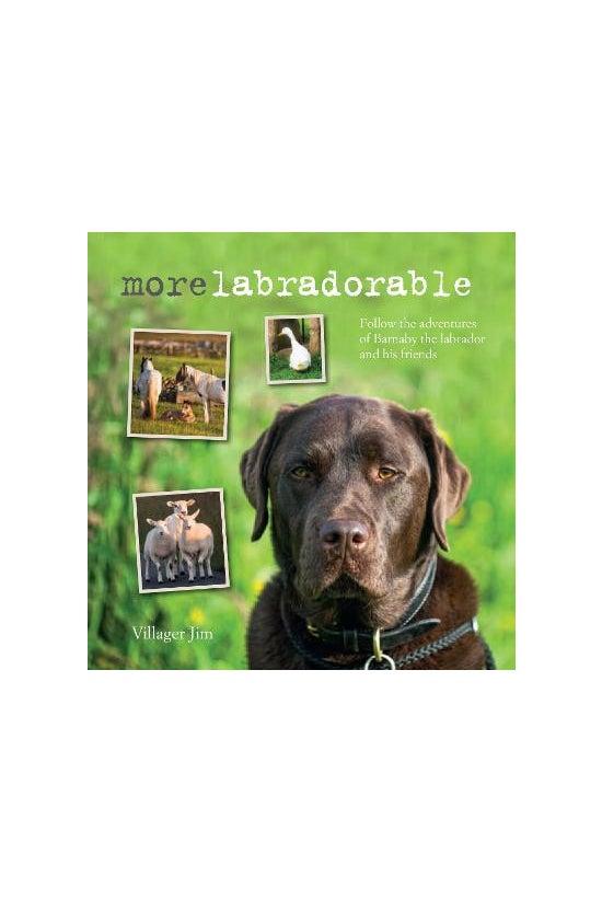 More Labradorable