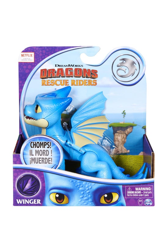 Dragons Rescue Riders: Basic D...