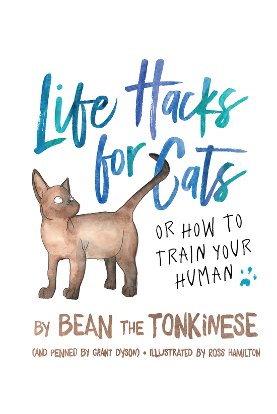 Life Hacks For Cats
