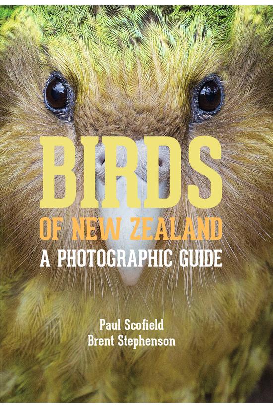 Birds Of New Zealand: A Photog...