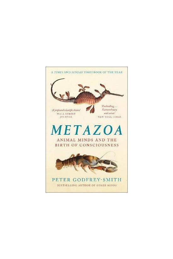 Metazoa: Animal Minds And The ...