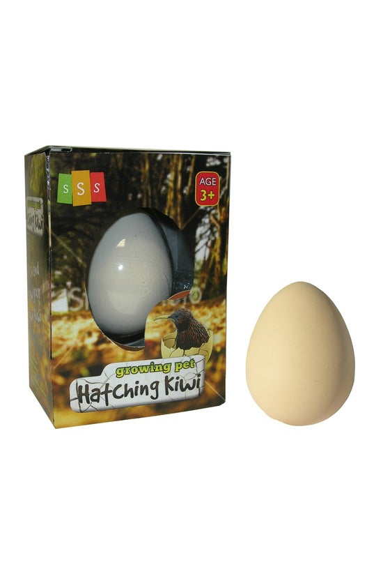 Growing Pet Hatching Kiwi