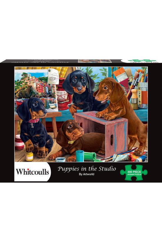 Whitcoulls 300 Piece Jigsaw Pu...