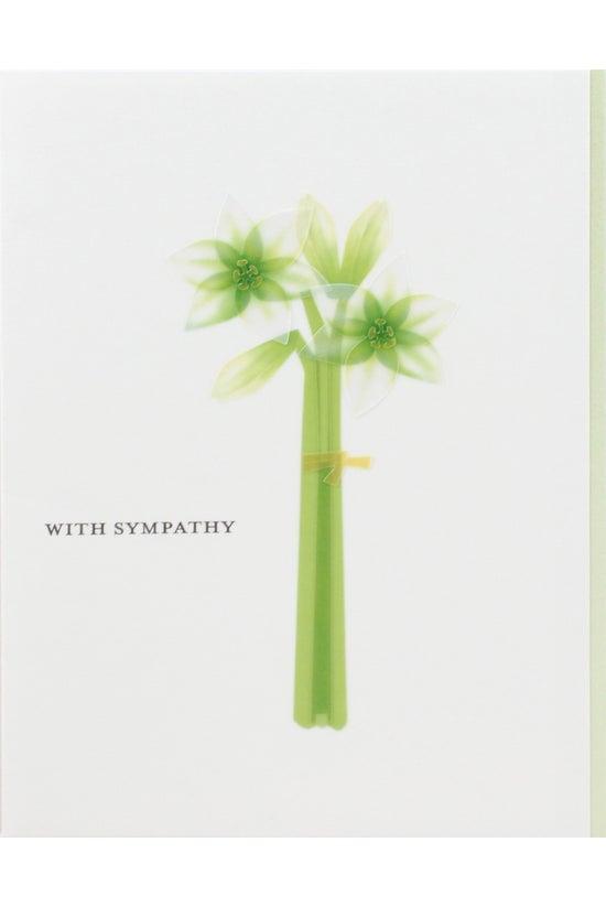 Papyrus Sympathy Card Bundle G...