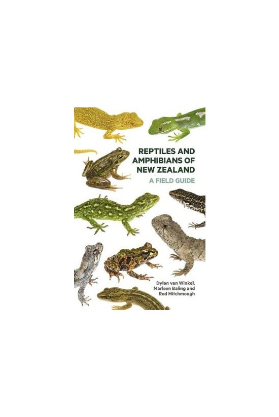 Reptiles And Amphibians Of New...
