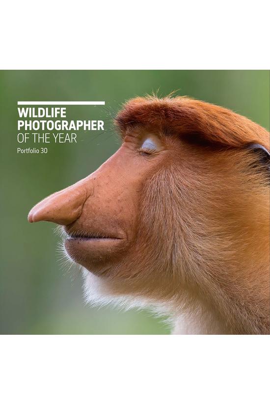 Wildlife Photographer Of The Y...