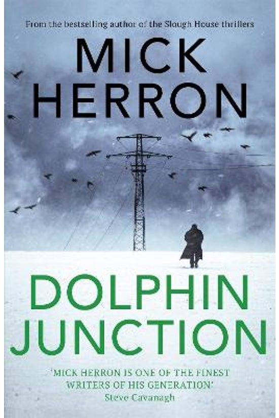 Dolphin Junction