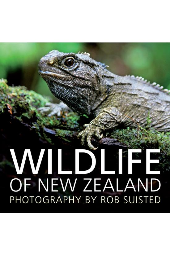 Wildlife Of New Zealand